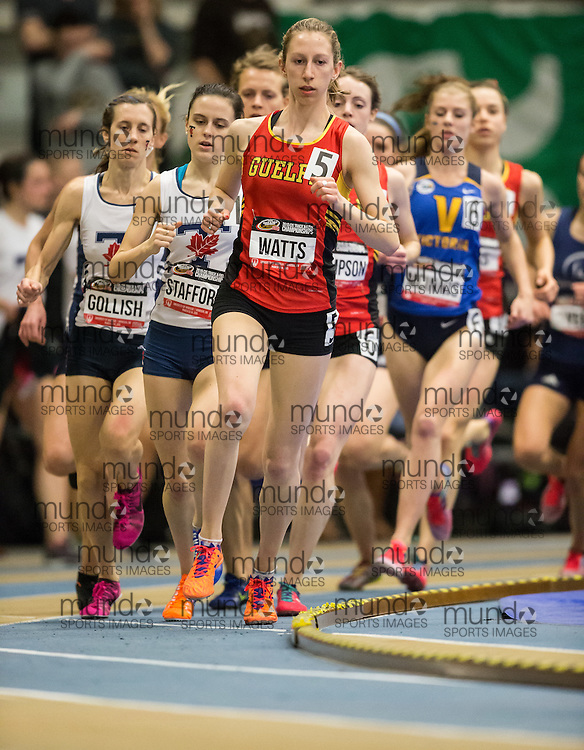 Windsor, Ontario ---2015-03-14--- Sophie Watts of Guelph competes in the 1500m at the 2015 CIS Track and Field Championships in Windsor, Ontario, March 14, 2015.<br /> GEOFF ROBINS/ Mundo Sport Images