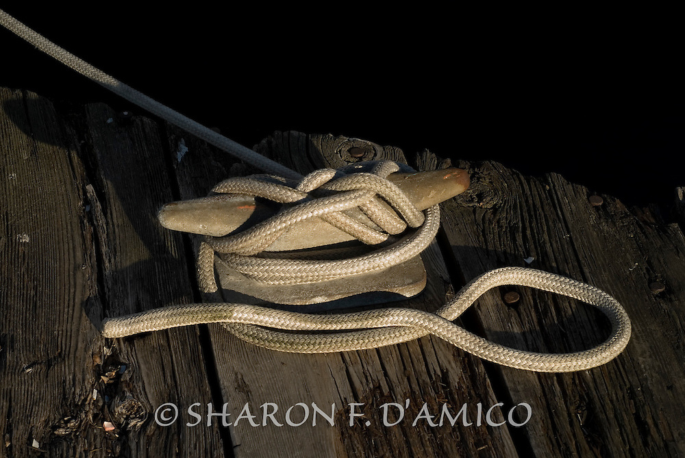 Soft Light Falls on a Perfectly Made Hitch Knot