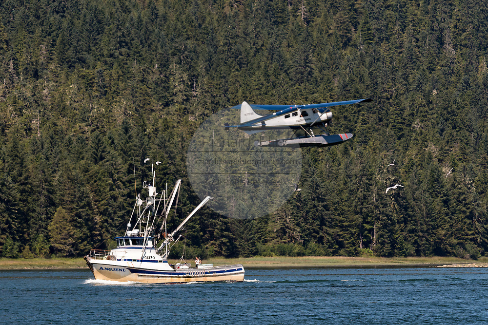 A fishing boat heads down the Wrangell Narrows as a float plane takes off above in the tiny village of Petersburg on Mitkof Island in Frederick Sound with the Alaska Coast Range of mountains behind on Mitkof Island, Alaska. Petersburg settled by Norwegian immigrant Peter Buschmann is known as Little Norway due to the high percentage of people of Scandinavian origin.