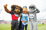 The 3 Winning Mascots during the NatWest T20 Blast semi final match between Northamptonshire County Cricket Club and Warwickshire County Cricket Club at Edgbaston, Birmingham, United Kingdom on 29 August 2015. Photo by David Vokes.