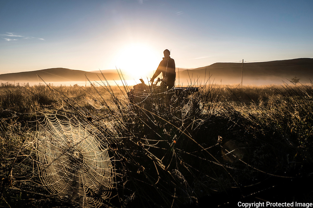 Pennymuir, Hownam, Jedburgh, Scottish Borders, UK. 17th September 2016. A cobweb interweaving rushes of grass is illuminated by the early morning sun rising behind the Cheviot Hills as hunters make their way up the old Roman Road.