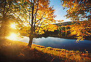 A gentle river flows past yellow, fall foliage at sunset.