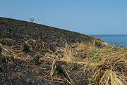 Man on top of burned soil hill in Pachequilla Island. Las Perlas Archipelago, Panama province, Panama, Central America.