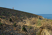 Man on top of burned soil hill in Pachequilla Island. Las Perlas Archipelago, Panama province, Panama, Central America.