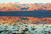 Morning reflections in Badwater Basin, Death Valley National Park.