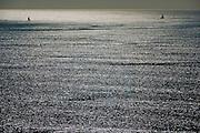 Sailing, Santa Monica, CA, City by the Bay, seaside city, Southern California, coastal getaway, tourist, vacation,