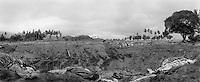 15 Tage nach dem schweren Erdbeben werden in LHOKNGA westlich von Banda Aceh immer noch Leichen aus den Truemmerfeld geborgen, die der Tsunamie zurueckgelassen hat.  Die Umgebung um das Massengrab in LHOKNGA und die Stadt wurde voellig vom Tsunamie zerstoert. ..Fiftteen days after the earthquake and the Tsunamie there are still bodies in the ruins in LHOKNGA  west of Banda Aceh. .Surround the Massgrave of  LHOKNGA the whole area was hit so badly. The city is compltly destroyed<br /> Murat Tueremis<br /> Germany.<br /> +49-171-5437080.<br /> email: murattueremis@t-online.de