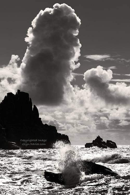 Nominee in the 'Nature' category of the 2019, International 14th Black & White Spider Awards <br />