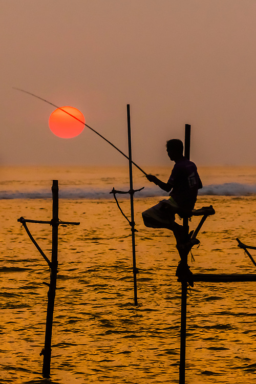 Stilt fishermen fishing at sunset, Ahangama, Southern Province, Sri Lanka.