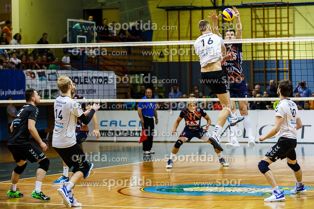 during volleyball match between Calcit Volley and ACH Volley in Final of 1. DOL Slovenian Man national Championship 2016/17 on 24th of April, 2017 in Kamnik, Slovenija.  Photo by Grega Valancic / Sportida