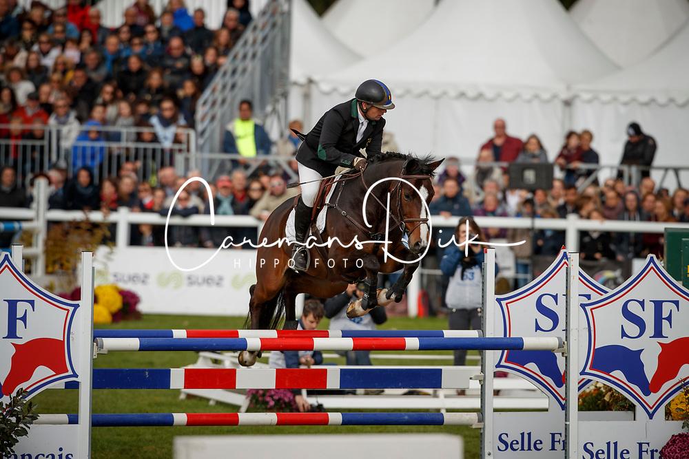 De Jamblinne Geoffroy, BEL, Consequent Pia Z<br /> Mondial du Lion - Le Lion d'Angers 2017<br /> &copy; Dirk Caremans<br /> 22/10/2017