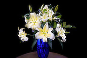 Vase of lilies lit by light-painting.