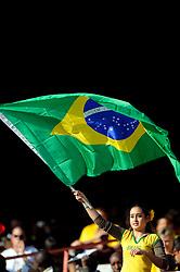 A female Brazil fan waves a flag