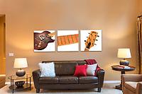 Triptych Wall Art,Gibson Guitar L6-MS,