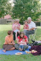 Families enjoying a picnic in the park,