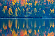 Reflection on the St. John River in autumn<br />