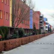 NLD/Almere/20080109 - Gekleurde woningen in Stedenwijk Almere