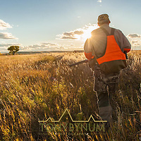 man hunting phesant along a ditch in montana,