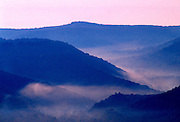 USA, West Virginia, Williams River Valley, Monongahela National Forest
