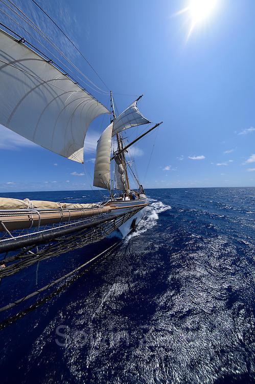 Corwith Cramer is a 134-foot steel brigantine built as a research vessel for operation under sail. Sargasso Sea, Bermuda | Der Forschungssegler Corwith Cramer durchquert im April 2014 die Sargasso See von Puerto Rico kommend bis zu den Bermuda Inseln.