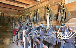 Saddles ready to work, barn, Sauer-Beckman Living History Farm.