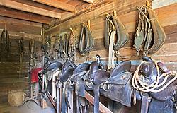 Saddles ready to work, barn, Sauer-Beckman Living History Farm.