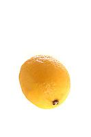 Lemon on white background - studio shot