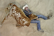GOLD COAST, AUSTRALIA - JUNE 16:  Terry Evison of Nilma competes in the Steer Wrestling during the National Rodeo Finals on June 16, 2013 on the Gold Coast, Australia.  (Photo by Matt Roberts/Getty Images) *** Local Caption *** Terry Evison