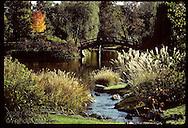 People on wooden bridge overlooking pond in Japanese Garden at Missouri Botantical Garden;fall. Missouri