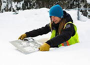 Danyelle Magnan measures snow levels at the testing plot at the summit of Rogers Pass. Avalanche forecasting is an important part of keeping people safe and the highways open. (Marissa Tiel/ Revelstoke Review)