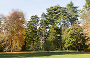 Autumn landscape trees National arboretum, Westonbirt arboretum, Gloucestershire, England, UK
