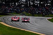 May 5, 2019: IMSA Weathertech Mid Ohio. #55 Mazda Team Joest Mazda DPi, DPi: Jonathan Bomarito, Harry Tincknell, #31 Whelen Engineering Racing Cadillac DPi, DPi: Felipe Nasr, Pipo Derani