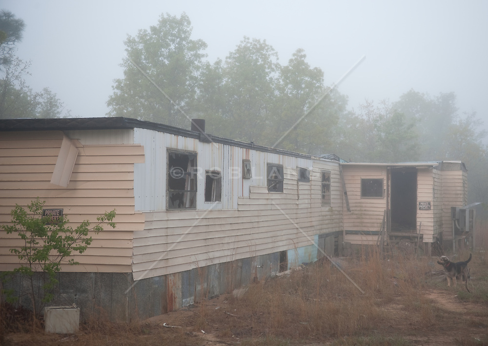 Condemned mobile home and a dog on a foggy day