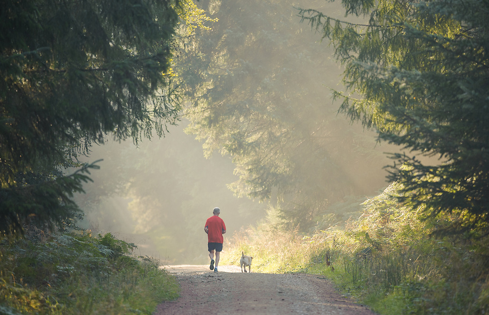 Runner along a misty track, Kirkhill, Aberdeenshire and Moray District,Forestry Commission, Scotland