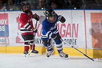 KELOWNA, CANADA - NOVEMBER 1:  Kelowna Minor Hockey Initiation Division scrimmages on the ice between periods of the  Kamloops Blazers at the Kelowna Rockets on November 1, 2012 at Prospera Place in Kelowna, British Columbia, Canada (Photo by Marissa Baecker/Shoot the Breeze) *** Local Caption ***