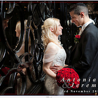 Antonia & Jeremy Wedding Album