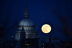 © Licensed to London News Pictures. 31/01/2018. London, UK. A full, blue supermoon rises behind St Paul's Cathedral in central London shortly after sunset. Two full moons in the same calendar month is also know as a blue moon. Photo credit: Ben Cawthra/LNP