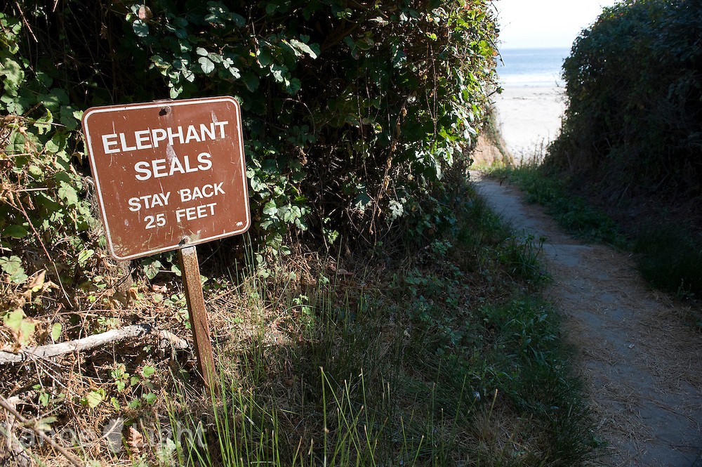 A sign on the way to Cove Beach at the Ano Nuevo state park along Highway One on the Pacific Ocean near the coastal town of Pescadero, just north of Santa Cruz. Ano Nuevo is a prime mating ground for Elephant Seals in the winter.
