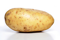 Close-up of potato on white background