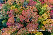 64776-02107 Aerial view of Hugoboom Lake in fall color Alger Co. MI