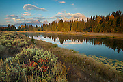 Morning at Schwabacher's Landing, Grand Tetons National Park, Jackson, Wyoming