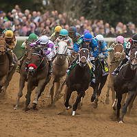 2015 Breeders' Cup Saturday October 31 at Keeneland Race Course in Lexington, KY.