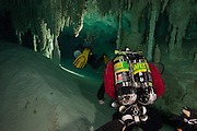 Plongeurs qui explore le système de caverne submergées No Hoch Na Chich, province du Yucatan, Mexique. | Cave divers explore No Hoch Na Chich cenote system located in Yucatan, Mexico.