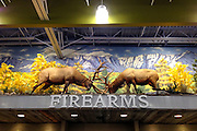Instore diorama taxidermy display of two elk locking horns at Cabela's Outpost store in Kalispell, Montana