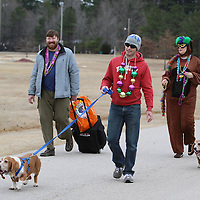 Libby Ezell | BUY AT PHOTOS.DJOURNAL.COM<br /> Dog owners and dog lovers alike showed up decked out in their Mardi Gras gear for Saturday's Krewe of Barkus Dog Parade at Veterans Park