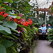 Asian couple sits on bench inside Volunteer Park Conservatory, Seattle, Washington