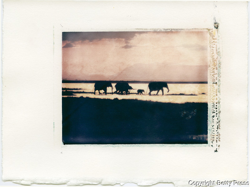 A herd of elephants make their way across a dry lakebed. Amboseli, Kenya<br />