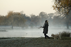 © Licensed to London News Pictures. 25/11/2017. London, UK. Frost covered landscape at Bushy Park, London at sunrise on November 25, 2017 as a drop in temperatures hits the UK. Photo credit: Peter Macdiarmid/LNP