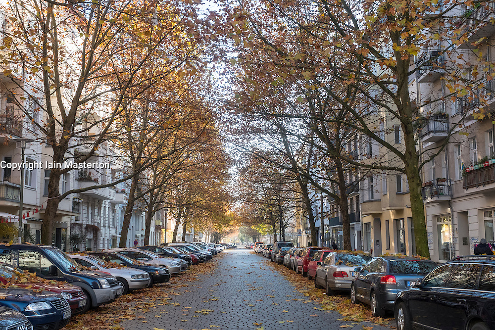 Autumn colours on Hufelandstrasse in gentrified Prenzlauer Berg, Berlin Germany