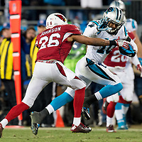 Carolina Panthers wide receiver Corey Brown (10) Arizona Cardinals free safety Rashad Johnson (26)